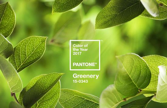物以稀为贵, 2017年的pantone流行色又是草木绿,沙弗莱势必掀起彩宝界
