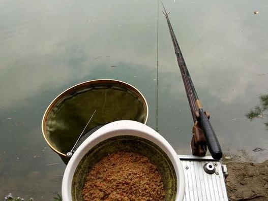 青山绿水间,垂钓的高级河鲜,不该出现在餐桌上