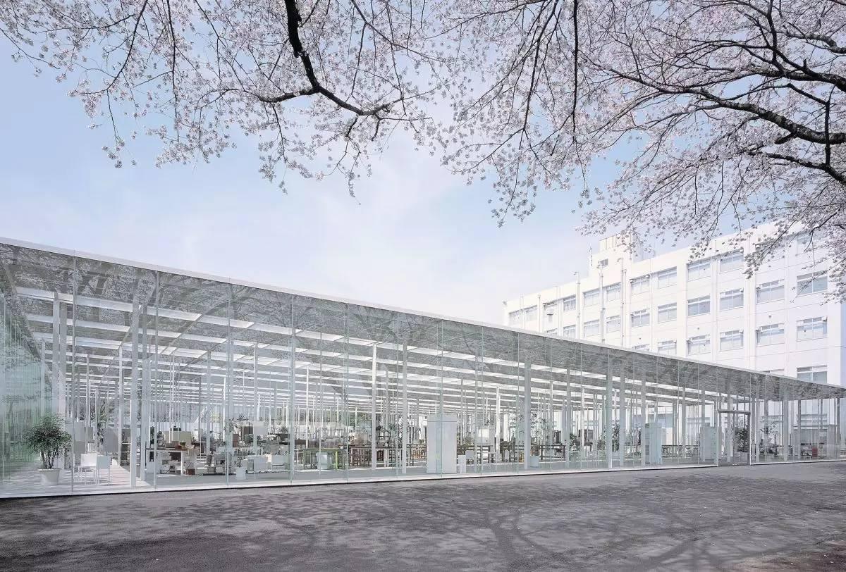 大学 神奈川 工科