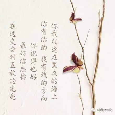 徐志摩|毕生行径都是诗,随遇自有乐土