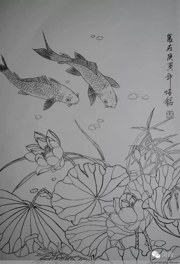 红鲤鱼手绘炫酷图