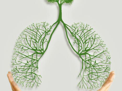 > 肺癌恶变后的医治方式有什么
