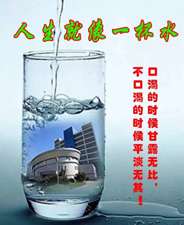鹰大版中老年蜜汁表情风味(斗图必备,亲测有表情包qqa蜜汁王尼玛图片