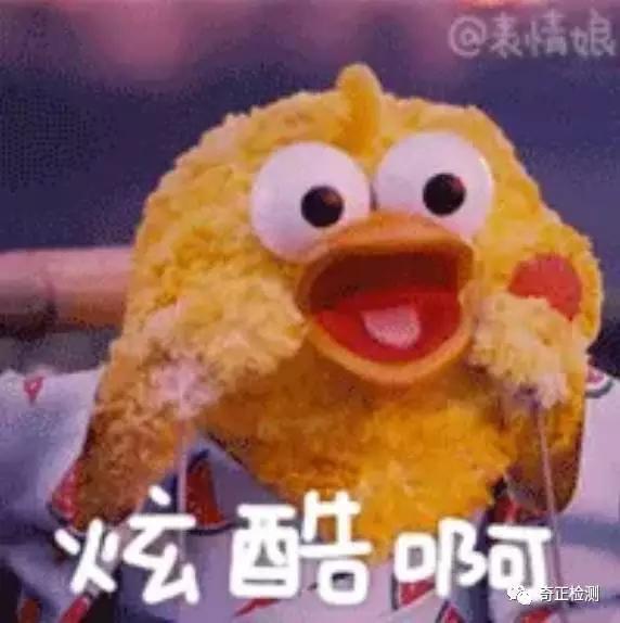 朋友圈爆火的两只小黄鸡鸡,是来自日本的鹦鹉搞笑鼓敲的萌恶图片图片