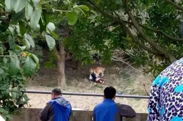 是中国水域面积最大的野生动物园