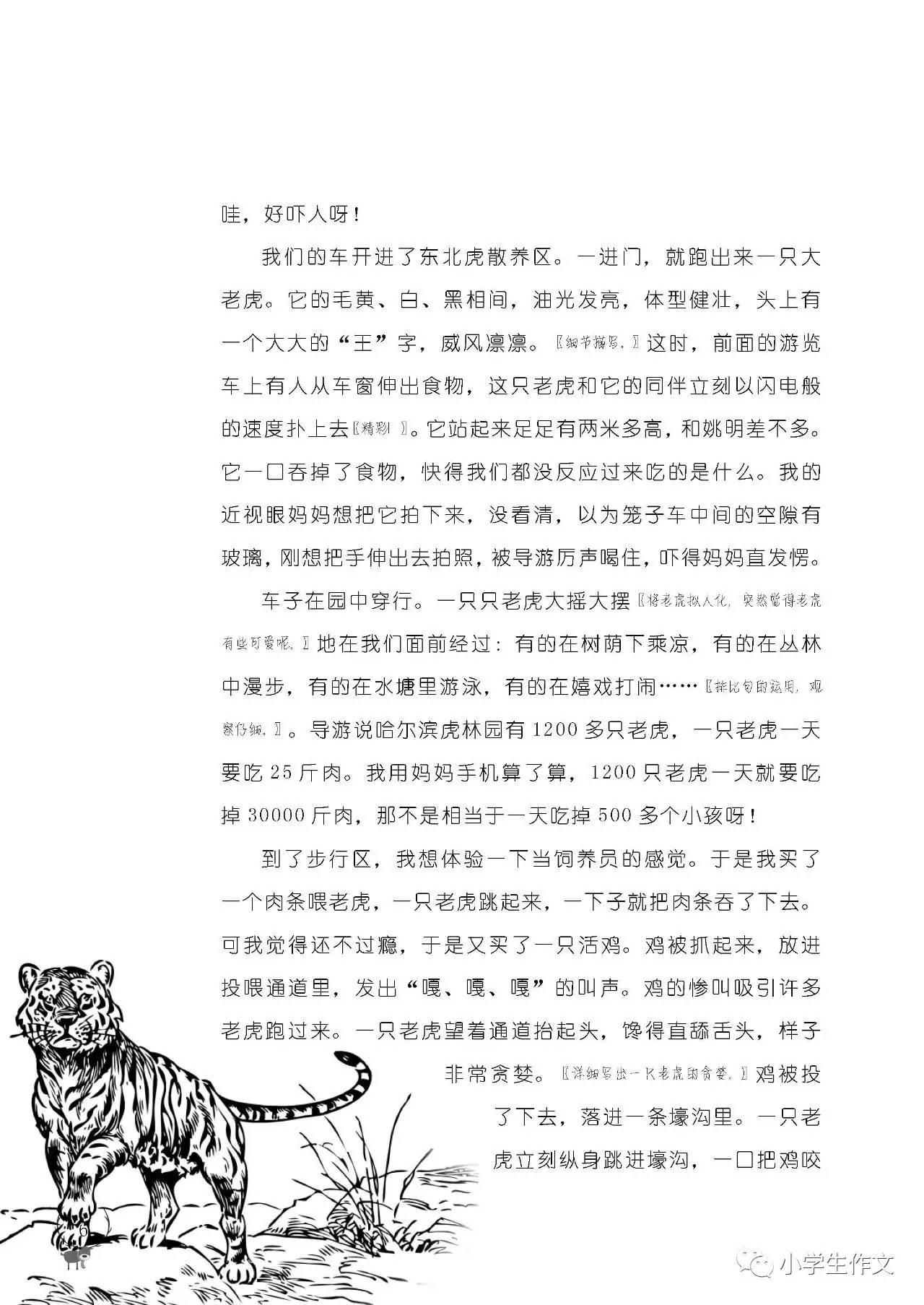 【免费领】新年小学:简谱礼物音乐创刊号+新年小学作文打字机杂志图片