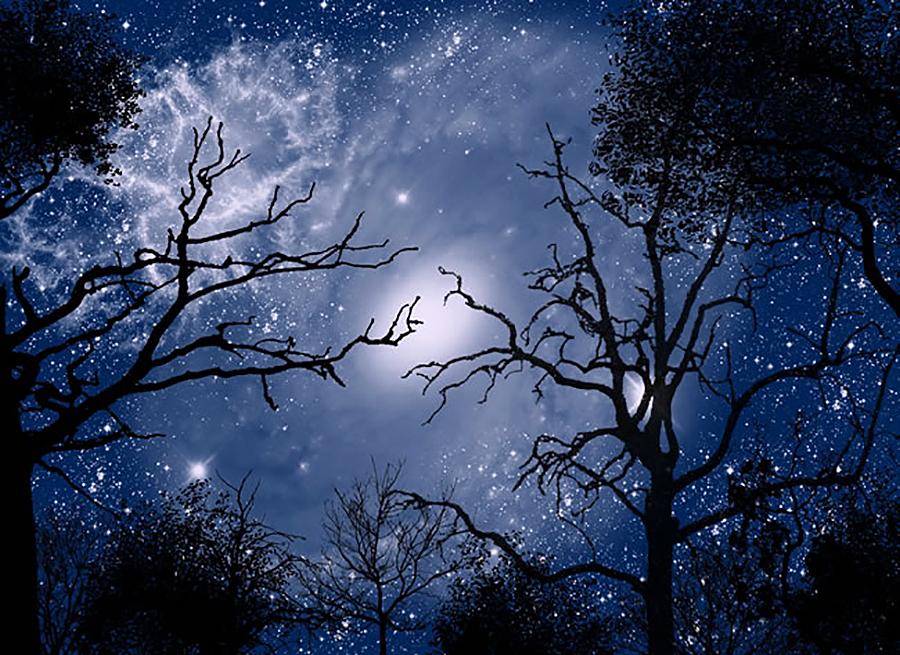 诗歌:《时间的雪》《请让我在手心写完你的名字》图片