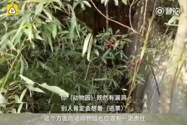 宁波野生动物园老虎咬人死者亲属:动物园有责任