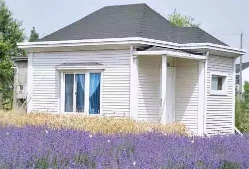 栋白色欧式小木屋,很像是走到了欧洲