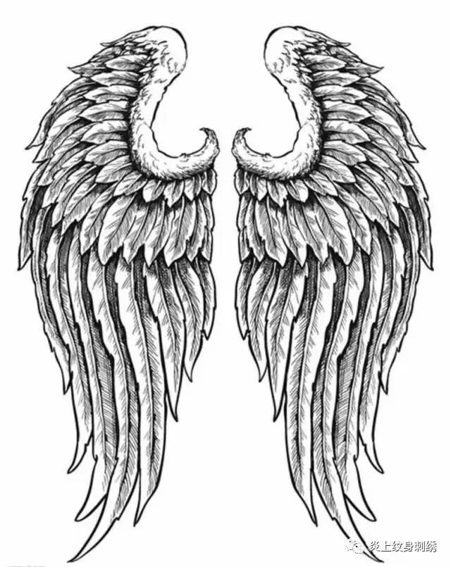 所以翅膀纹身                    渴望自由,渴望飞翔.