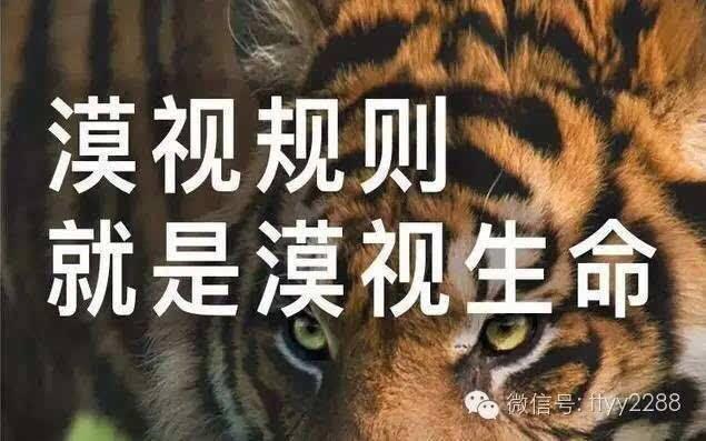 虽然宁波雅戈尔动物园老虎咬人事件已经发生