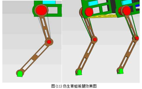4.3仿生青蛙后肢   机器人后肢设计如图所示,由于大多数跳跃时,青蛙