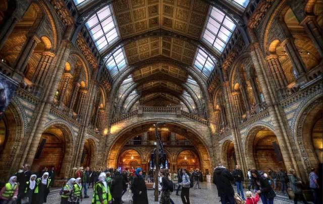 大英自然历史博物馆 | 博物馆巡礼