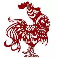 """谁说呆若木""""鸡""""?本来鸡的能力被低估了几千年……"""