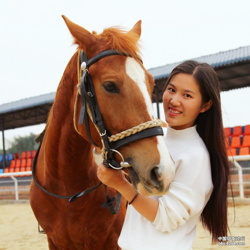 喜欢骑马v武术的武术自练美女图片