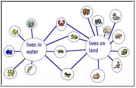 这种图,能改变孩子今天的学习,甚至未来的人生