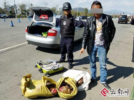 司机贩卖野生动物 威胁警察:我有病别刺激我 - 梅思特 - 你拥有很多,而我,只有你。。。