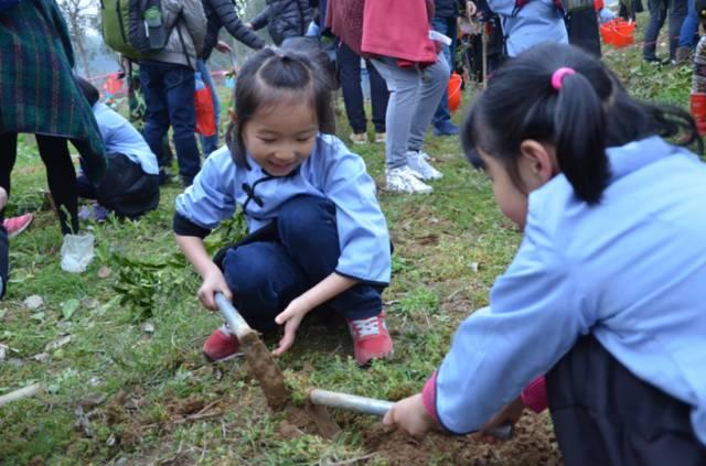 莫干山1932第二届亲子植树活动一起栽种绿色的理想