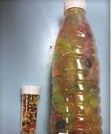 这东西很像糖 3岁女童被父母喂了280颗 水宝宝