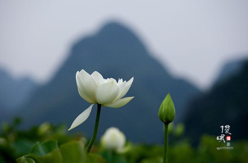 云南八大地理奇观 景美游客少 值得一去!