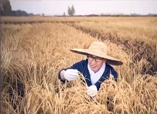还珠格格 紫薇身家过亿当妈,尔康东北种大米