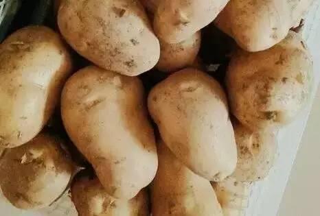 E乐彩彩票官网登录土豆原来这样吃能减肥降脂、降血压、美容!