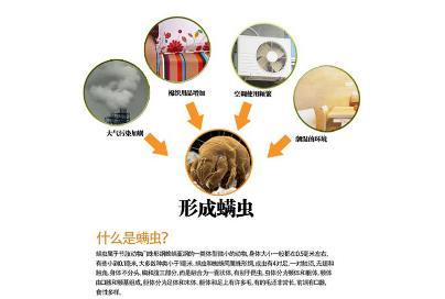 2013北京通信展如何除螨虫脸上,教你三大妙招轻松去除 珍闻秘档 河南新闻