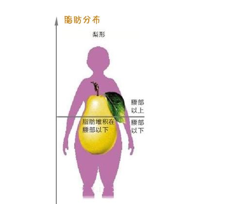 梨型身材减肥运动图片
