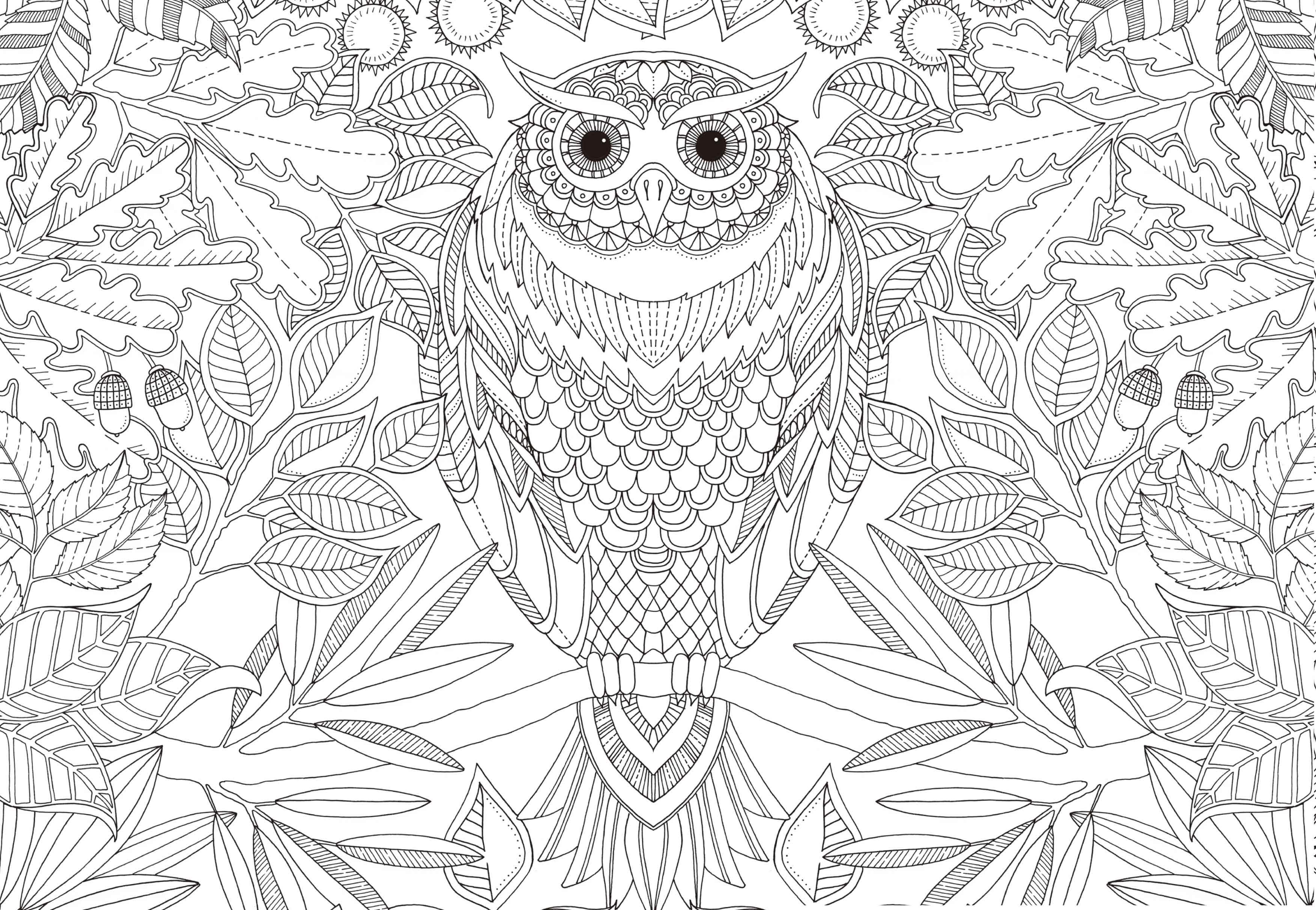 简笔画 设计 矢量 矢量图 手绘 素材 线稿 3507_2424