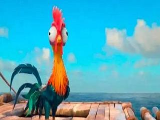 """鸡还有这等本事?第9条孩子绝对不知道"""""""