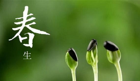 春天的礼物!送您春季养生口诀和方法 - 风帆页页 - 风帆页页博客