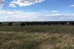 【金融圈线下互动】当金融科技遇上澳洲农场主……
