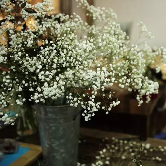 花材:较为常见的扶郎花,满天星,尤加利叶,八角金盘(果);可替换花材图片