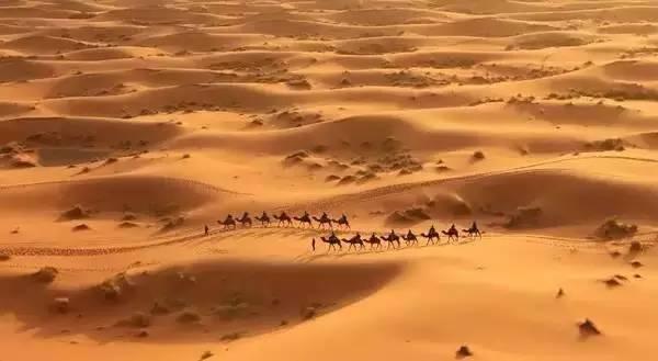 只有身临其境,才能真正懂得三毛《撒哈拉的故事》里描述的那些情景.图片