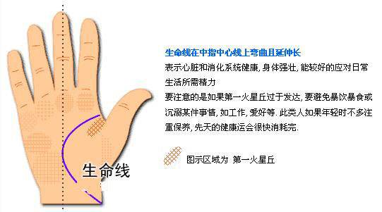 如果一个人手掌上的纹路很清晰很长,在相学上,这样的手相是比较吉