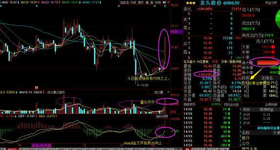 龙头股份:国企改革第一龙头股,净利润飙增845
