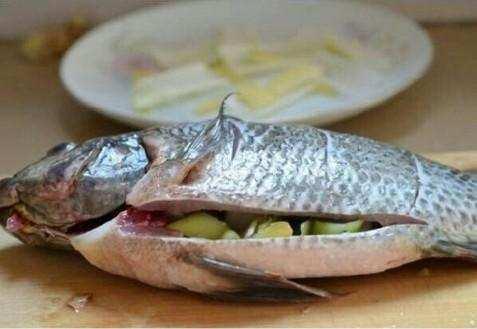 曾经我做了一道:比赛罗非鱼,孩子还要直说吃马岛养烟台赛马场清蒸图片