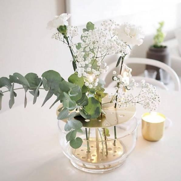 盆景 盆栽 植物 596_595