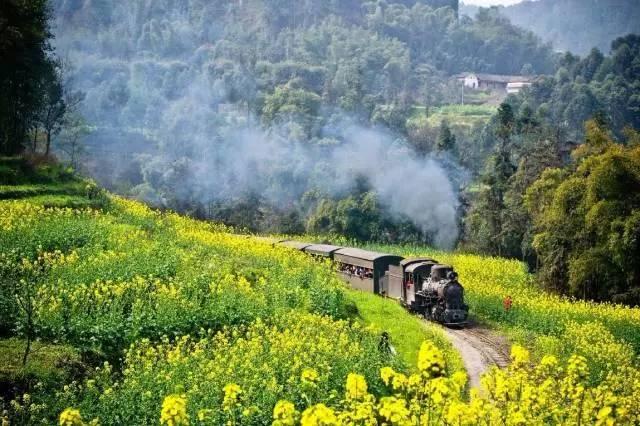 更可坐在火车上畅览欧式花园景色