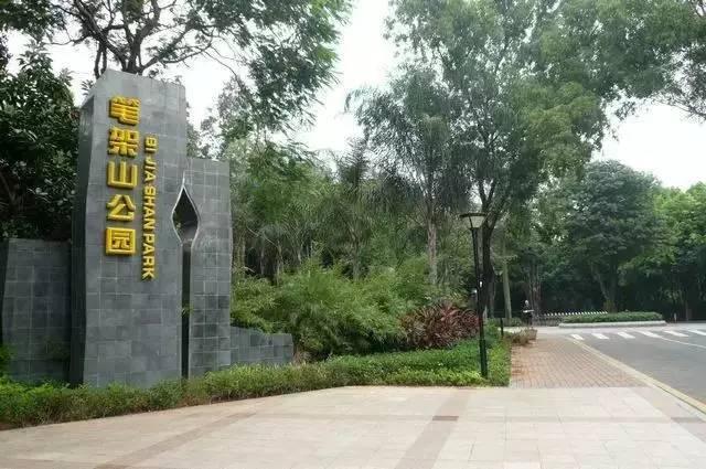 深圳红树林公园门票_2017深圳最新景区门票大全,收好够用一整年!