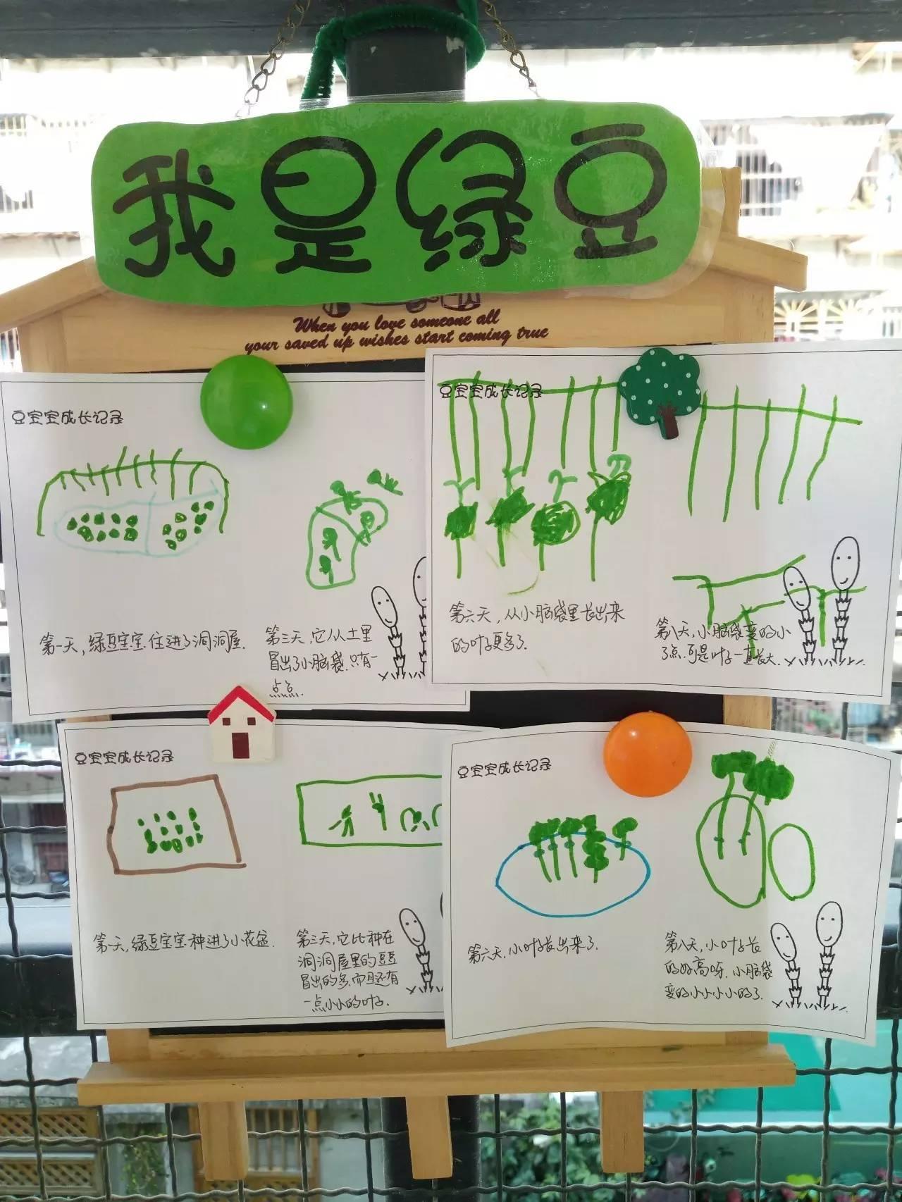 教室做爱种子_开学环创 | 哇,这还是我们的教室吗?