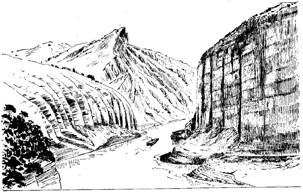 简笔画 手绘 素描 线稿 1043_661