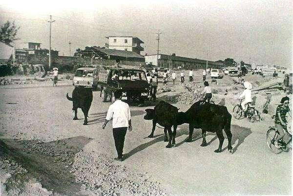 老照片 上世纪80年代的中国,最后一张如今已经很少见了