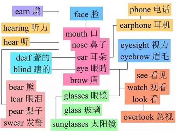 英语单词今天记住明天忘?思维导图实例+解析,再也不用背单词!