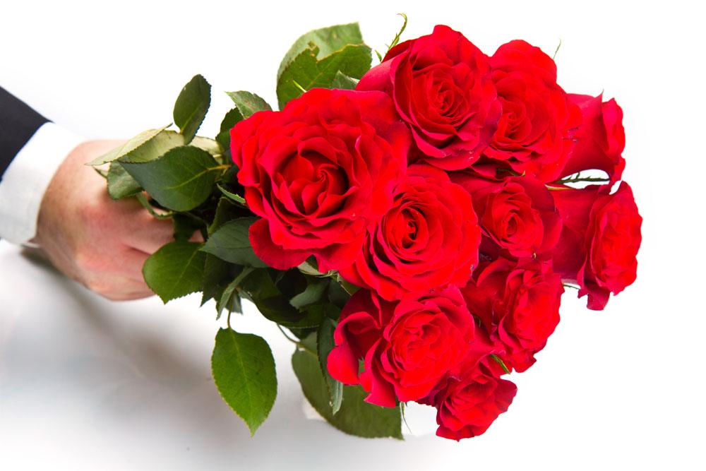 玫瑰:引无数英雄竞折腰,它凭什么能兜万千宠爱