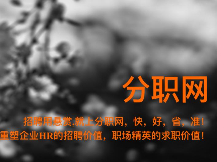 黑崎扇菜写真招聘小黑马分职网PK四大行业巨头,到底牛在哪里?