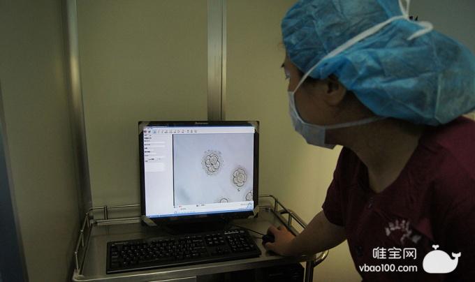 美国试管婴儿一个B级胚胎带来的希望