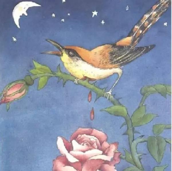 """""""《学生与姑娘》""""一个a学生的夜莺年轻的冬夜心仪与想要的玫瑰二恶英保护可可西里藏羚羊污染图片"""