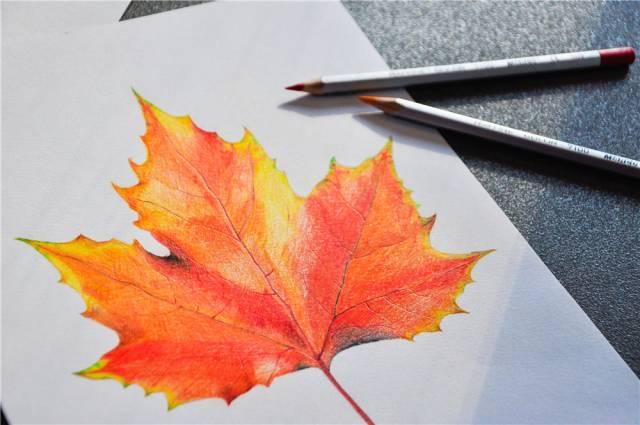 《遇见未来》 - 彩铅 - 彩色铅笔       《银杏叶》 - 装饰画