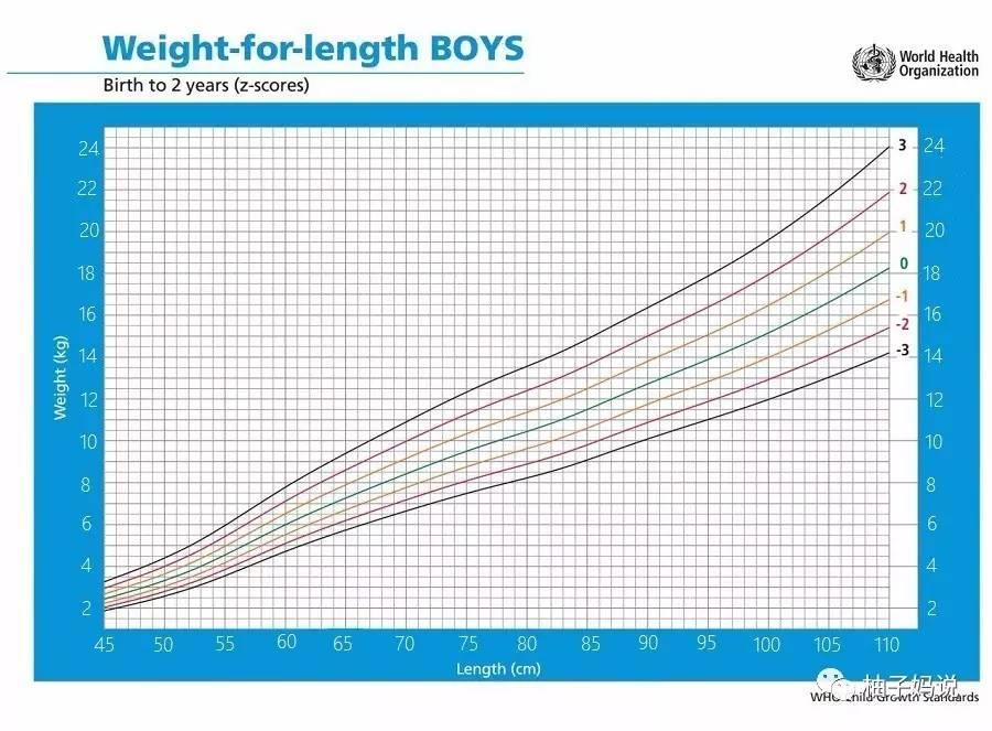 身高生长曲线-宝宝唯以胖瘦论成败 婴儿肥胖害处多图片